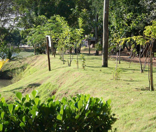 Parque Socioambiental Dorothy Stang