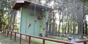 Zoológico de Mogi Mirim é reaberto e se torna opção de turismo regional
