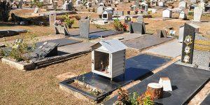 Cemitérios de Americana recebem dedetização