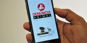 Americana lança aplicativo para denúncias de maus-tratos aos animais