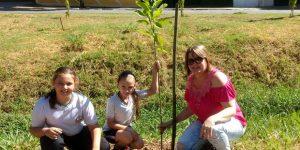 Prefeitura de Vinhedo planta mudas de árvores em risco de extinção