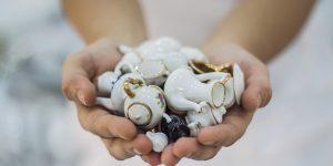 Inventora da máquina de lavar louça é inspiração de exposição em Campinas