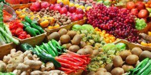 Ceasa promove feira de produtos orgânicos em Campinas