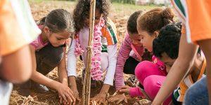 Semana Ambiental do CONSAB mobiliza centenas de estudantes em Holambra