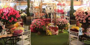 Enflor e Garden Fair devem atrair 15 mil turistas em Holambra