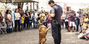 Ministrado por GM, Prefeitura oferece curso gratuito de obediência básica para cães