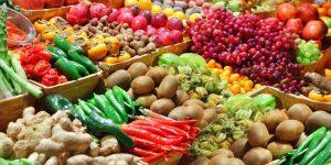 Ceasa Campinas inaugura feira de orgânicos