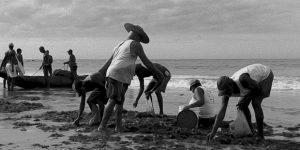 Casa de Cultura promove Cine Afro nesta quarta em Campinas