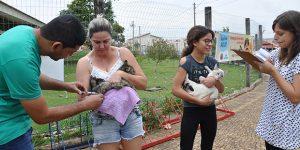 CCZ de Americana vacina dois mil animais no fim de semana