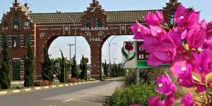Expoflora distribuirá flores em Viracopos para incentivar uso do aeroporto durante o evento