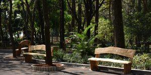 Funcionários do Parque Ecológico produzem bancos artesanais em Americana