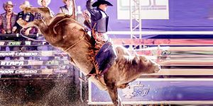 Rodeio Espraiadão de Limeira divulga shows para 2019