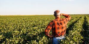 Engenheiro Coelho oferece curso para produtores rurais