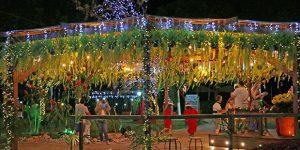 Prefeitura de Holambra inaugura decoração de Natal