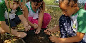 """""""Semana da Árvore"""" promove educação ambiental em Santa Bárbara d'Oeste"""
