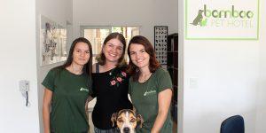 Bamboo Pet Hotel: cuidados e hospedagem de excelência que você procura!
